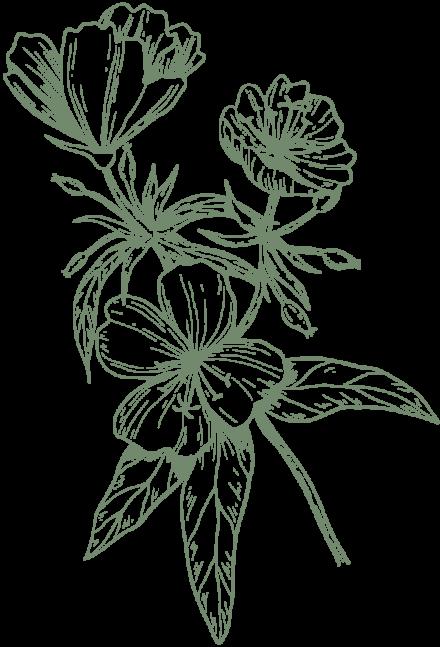 fleur-grande-kaki