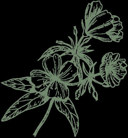 fleur-grande-kaki-2