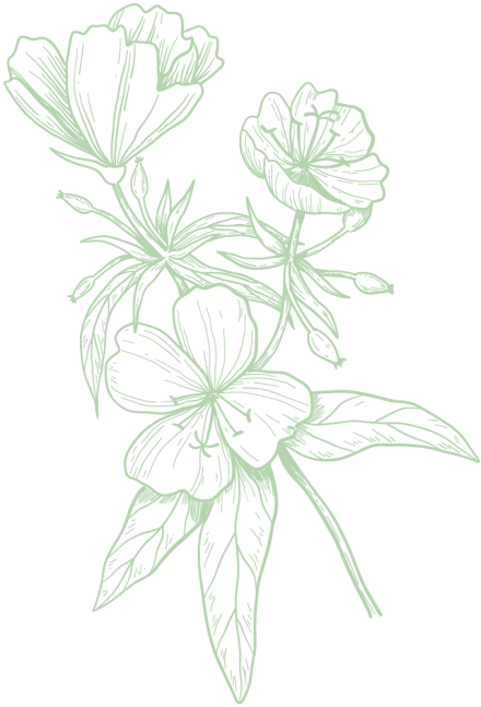 fleur-grande-vert-clair